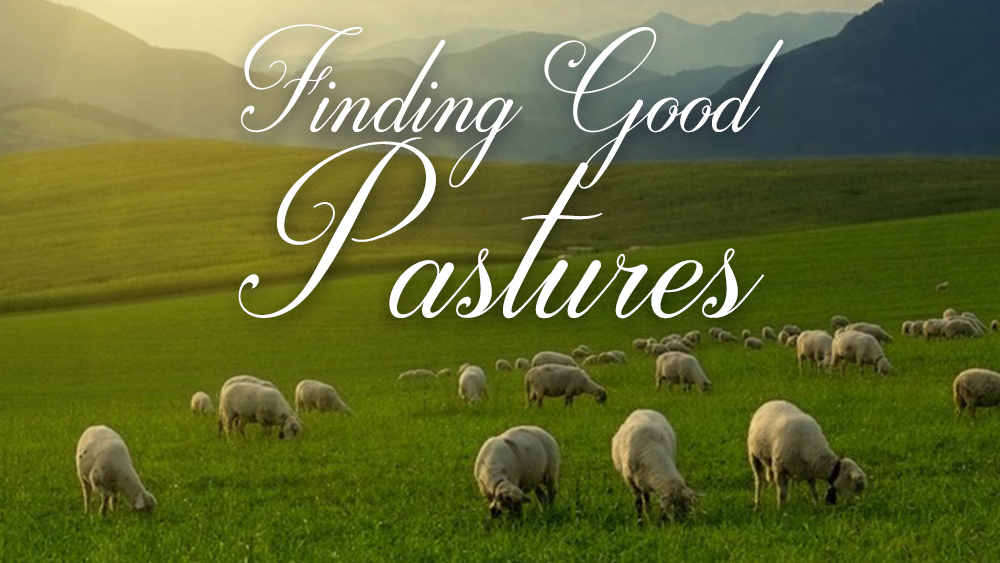 Finding Good Pastures