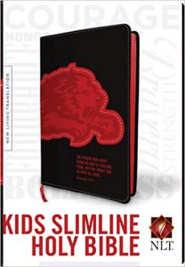 Kids Slimline Bible NLT Image