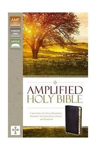 Amplified Thinline Holy Bible--bonded leather, black (indexed) Image
