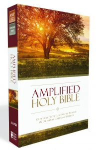 Amplified Holy Bible Image